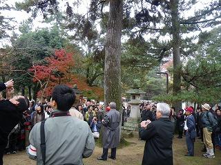 091123奈良東大寺の松もEMで元気に比嘉教授説明IMGP1136